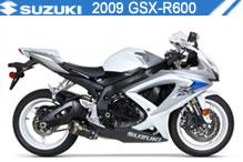2009 Suzuki GSXR600 Accessories