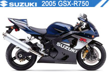 2005 Suzuki GSXR750 Accessories