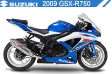 2009 Suzuki GSXR750 Accessories
