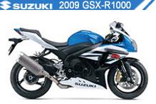 2009 Suzuki GSXR1000 Accessories