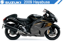 2009 Suzuki Hayabusa Accessories