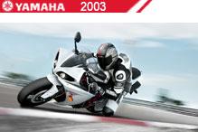 2003 Yamaha Accessories