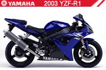 2003 Yamaha YZF-R1 Accessories
