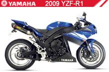 2009 Yamaha YZF-R1 Accessories