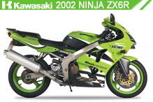 2002 Kawasaki Ninja ZX-6R Accessories