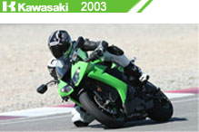 2003 Kawasaki Accessories
