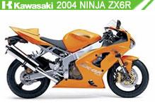 2004 Kawasaki Ninja ZX-6R Accessories