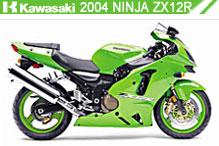 2004 kawasaki Ninja ZX-12R Accessories