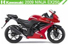 2009 Kawasaki Ninja EX250 Accessories