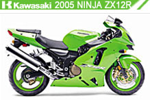 2005 Kawasaki Ninja ZX-12R Accessories