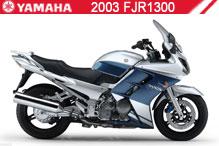 2003 Yamaha FJR1300 Accessories