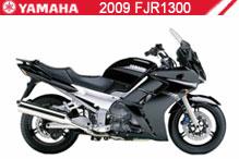 2009 Yamaha FJR1300 Accessories