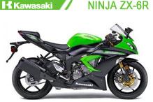 Ninja ZX6R Fairings