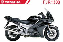FJR1300 Fairings