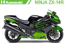 Ninja ZX14R (ZZR 1400) Fairings